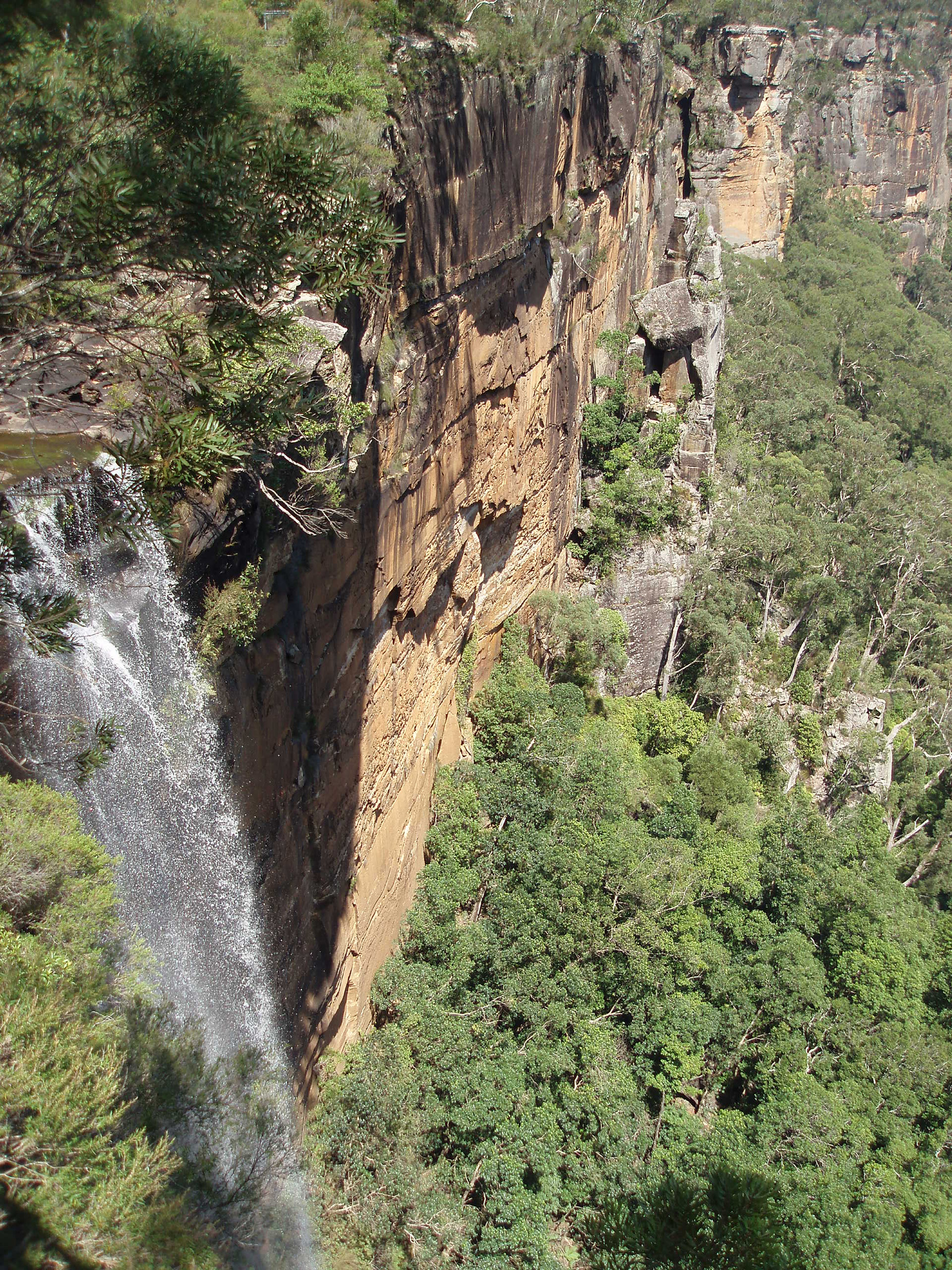fitzroy falls, Morton National Park, Southern Highlands, NSW