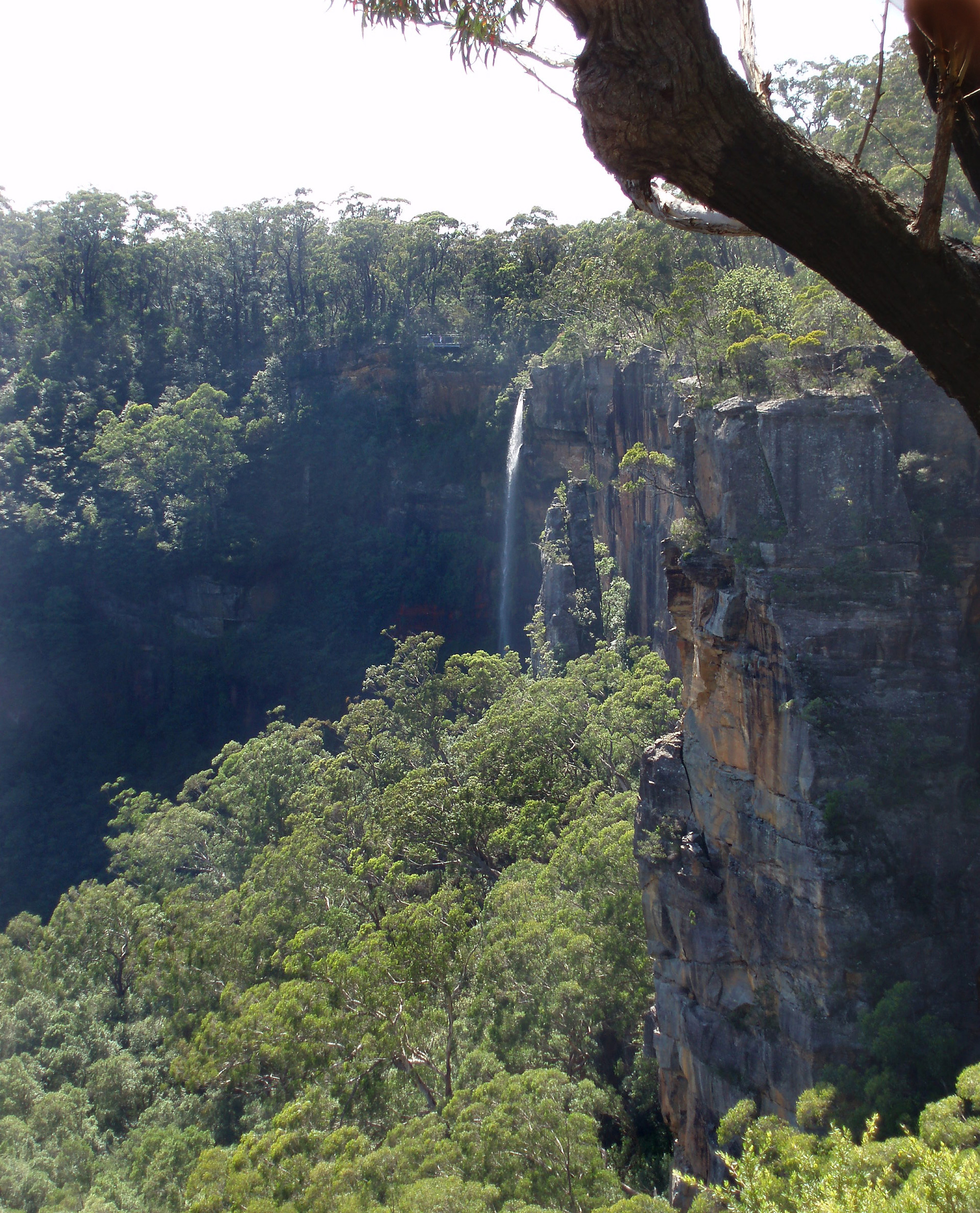 fitzroy falls on Yarrunga creek, in the morton national park, southern highlands, NSW