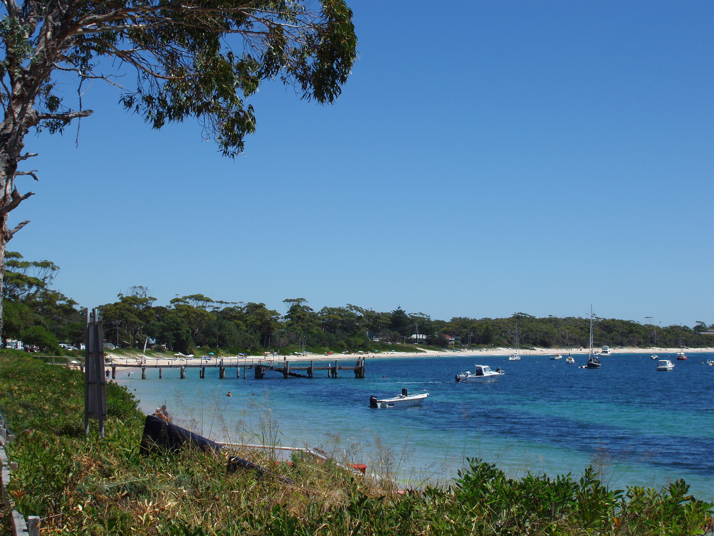 a picturesque view of shoal bay, new south wales,