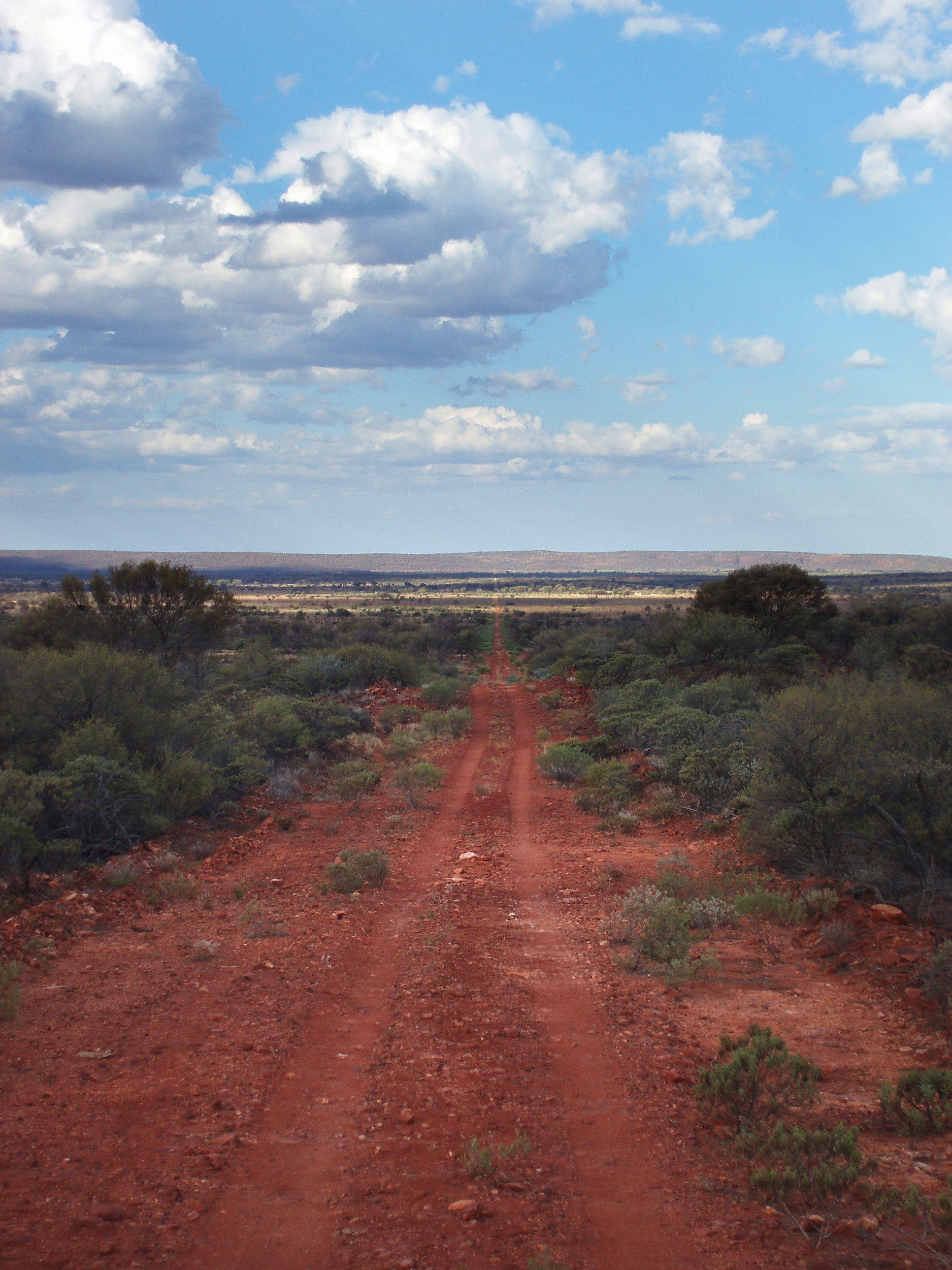 a long desert track stretches onto the horizon