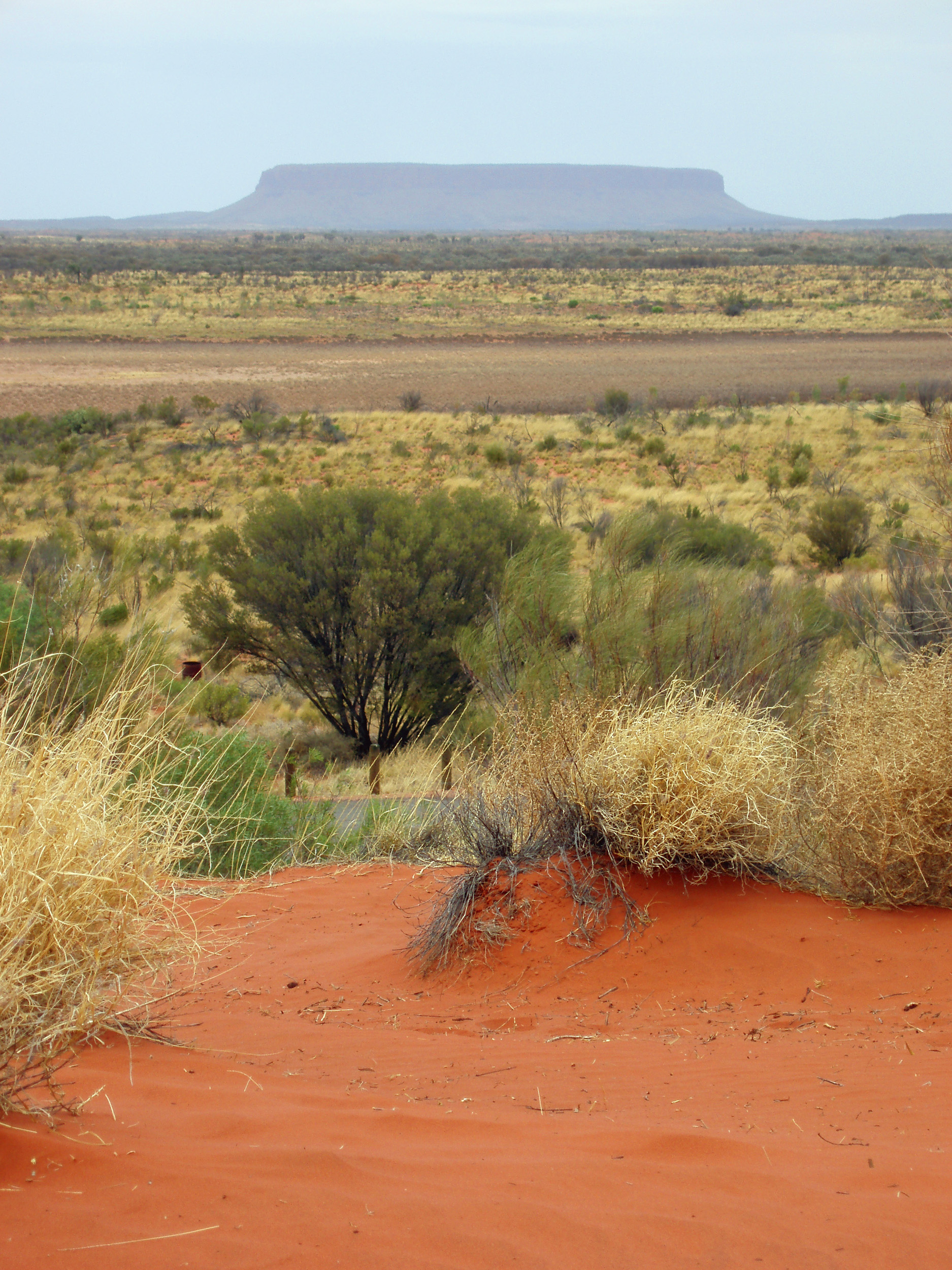mount connor or mt conner is a flat topped mountain sometimes mistaken for uluru - ayres rock
