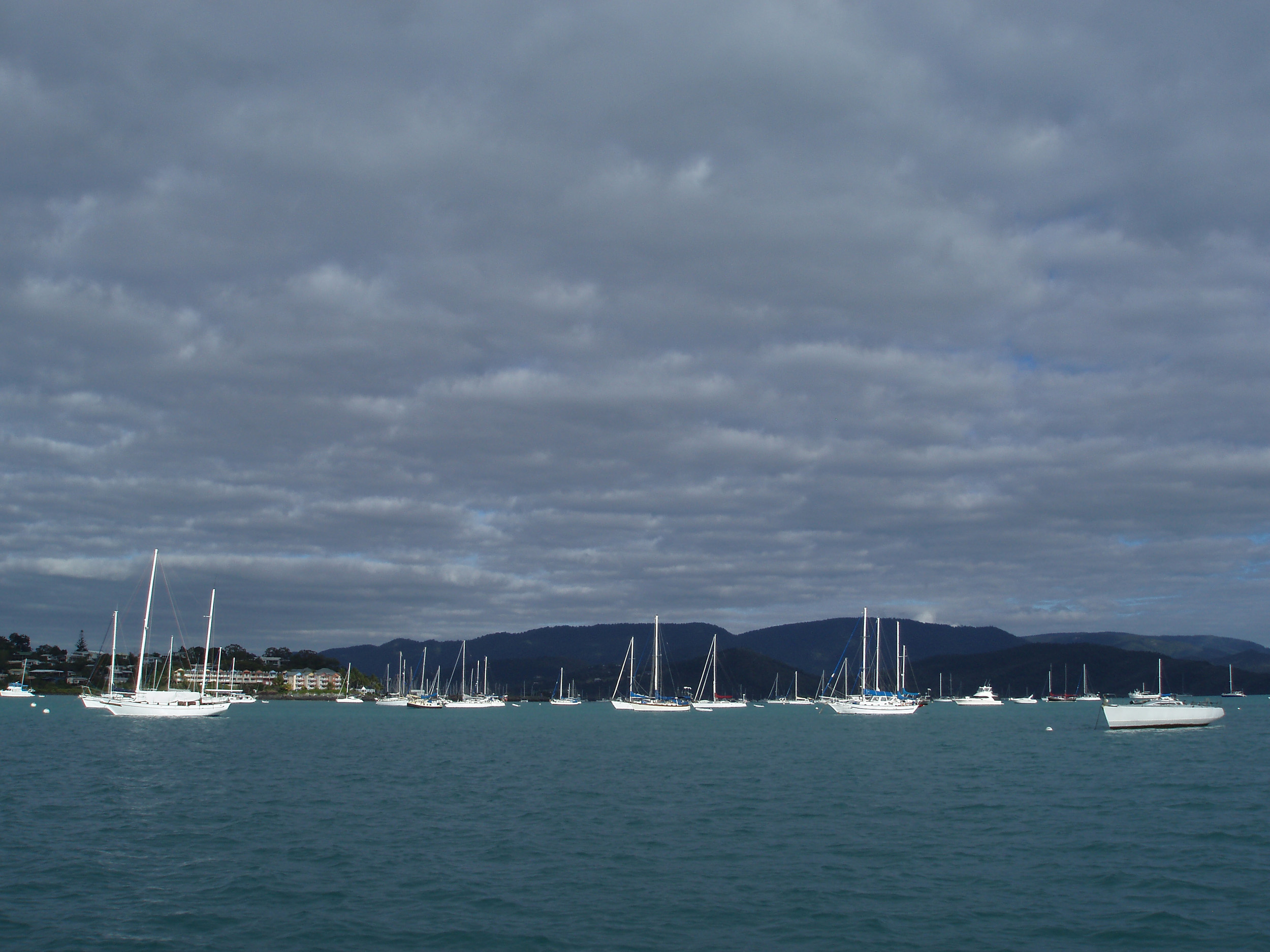boats moored or anchored off airle beach in muddy bay - pioneer bay
