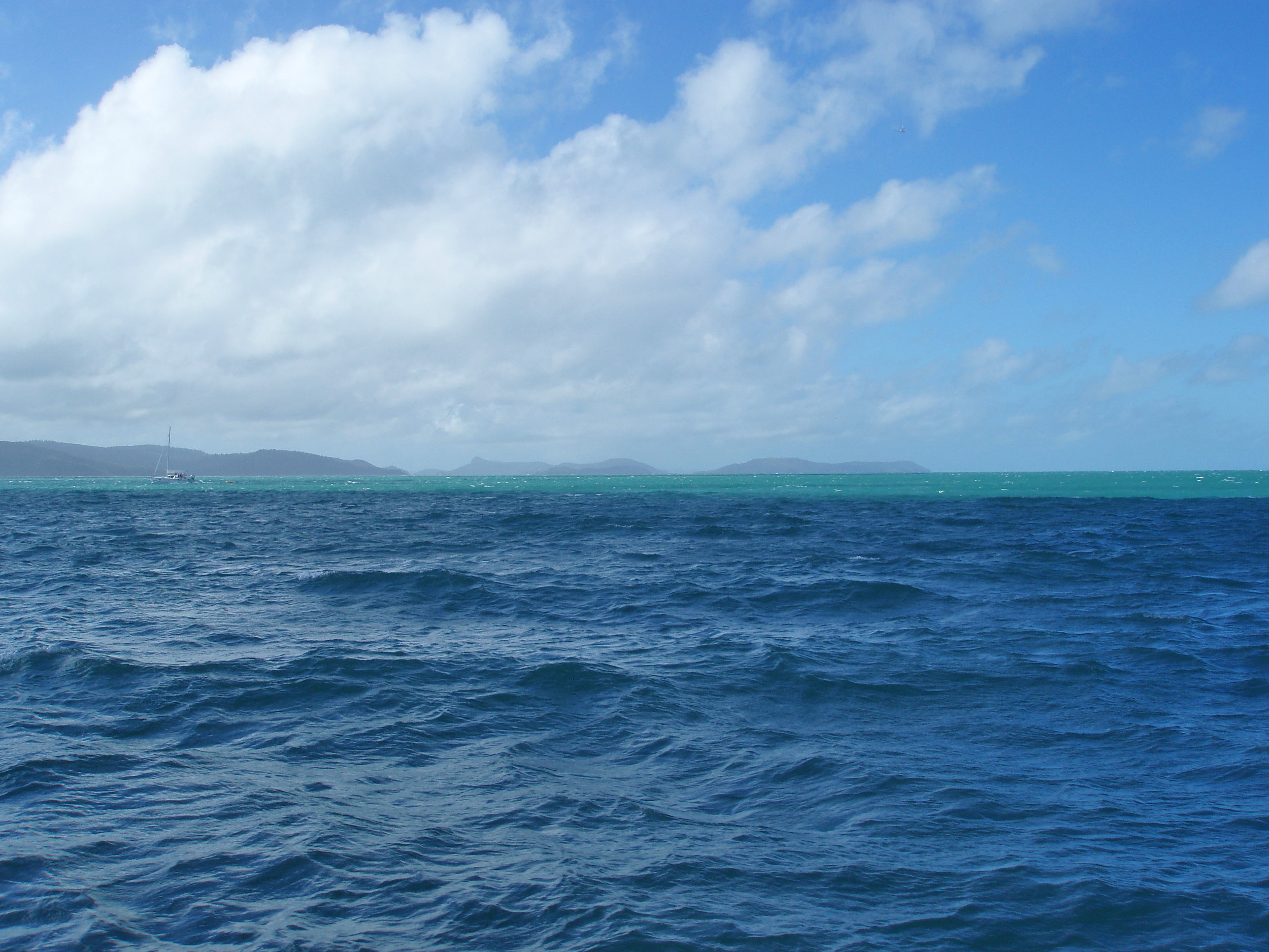 an open expanse of water and a sailing boat, whitsunday passage