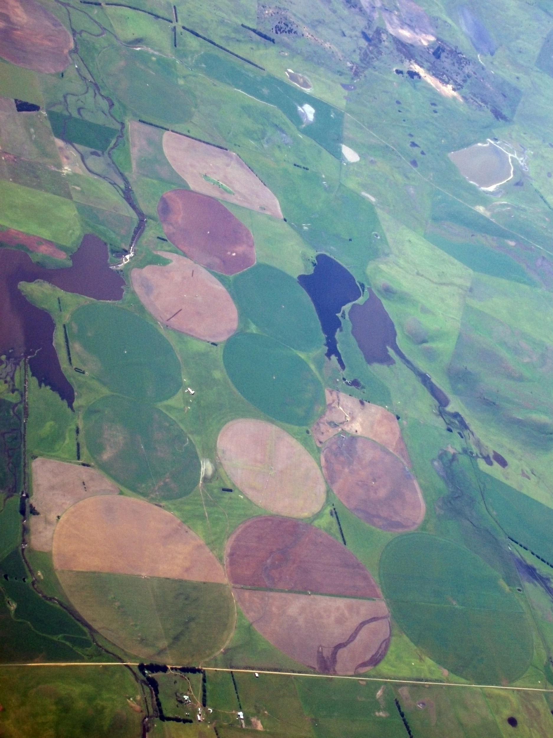 from the air - tasmanian farm land  with large circles of crops